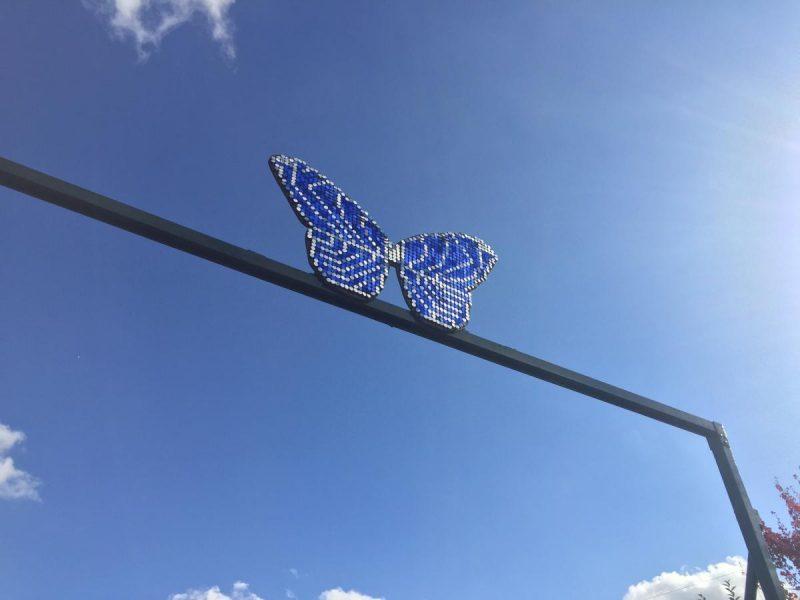 Stratford upon Avon Butterfly Farm